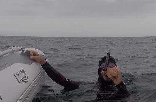 the swim ben lecomte